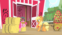 Pinkie Pie shows up from between the hay bales S1E25