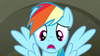 Rainbow Dash --I asked a lot of fabric questions-- S6E9