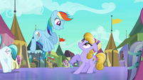 Rainbow Dash accosting Amber Waves S3E01