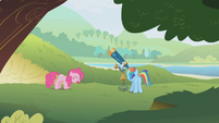 Rainbow and Pinkie watching their quarry S1E5