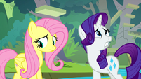 Rarity's front left hoof disappears S8E4