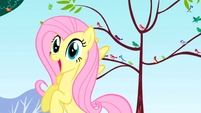 S01E01 Fluttershy zauważa Spike'a
