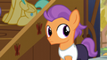 Tender Taps hears Apple Bloom S6E4.png