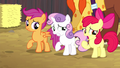 Cutie Mark Crusaders caught in their lie S5E6.png