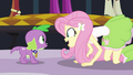 Fluttershy talking to Spike EG.png
