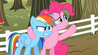 Pinkie Pie 'It was like a moment in time you can never get back' S2E15