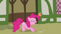 Pinkie Pie 'Wee' S3E3
