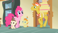 Pinkie Pie here comes Mr. Cake S2E13