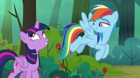Rainbow Dash amused by Twilight's excitement S8E13