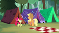 AJ and Apple Bloom finish raising their tent S7E16.png