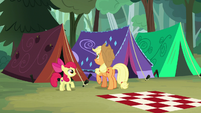 AJ and Apple Bloom finish raising their tent S7E16