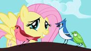 Fluttershy-with-birds1