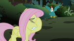 Fluttershy putting hoof over eye S1E17