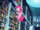 Pinkie Pie checking books S3E1.png