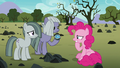Pinkie trying to understand Limestone's lesson S8E3.png