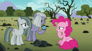 Pinkie trying to understand Limestone's lesson S8E3