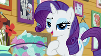 Rarity -how professional- S7E6