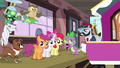 "Spike ""is three ponies enough?"" S03E11.png"