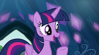 "Twilight ""as long as you get permission"" S9E3"
