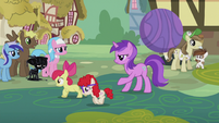 Amethyst Star directing ponies S5E9