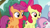 "Apple Bloom ""you can try 'em all!"" S7E21"