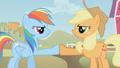 Applejack & Rainbow brohoof S1E13.png