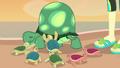 Baby turtles hugging Tank EGDS14.png