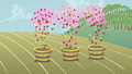 Floating apples falling into buckets S1E04.png