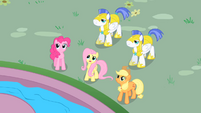 "Fluttershy ""come down from there"" S01E22"