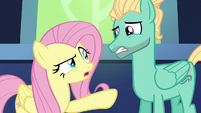 "Fluttershy ""you're going to work"" S6E11"