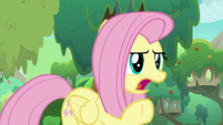 Fluttershy arguing -yes, it is!- S8E23