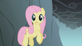 Fluttershy jumping the cliff S1E07.png