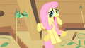 Fluttershy singing S01E22.png