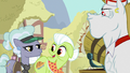 """Granny Smith """"I have had a hankerin'"""" S7E2.png"""