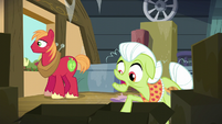 Granny Smith tries to search for the ribbon S5E17