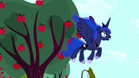 Luna looks around for the Tantabus S5E13