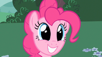 Pinkie Pie being asked S2E13