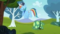 Rainbow Dash flying past Tank S2E07