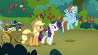 Rainbow Dash pointing at Applejack's gear S8E13