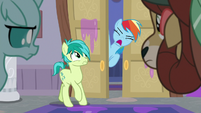 "Rainbow Dash shouting ""next!"" S8E16"