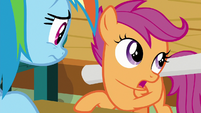 "Scootaloo ""time for me to explore"" S8E20"