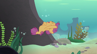 Scootaloo swims happily after her friends S8E6