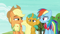 Applejack and Rainbow grin at each other S6E18.png