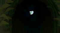 Big Mac spies on ponies from the shadows S5E21