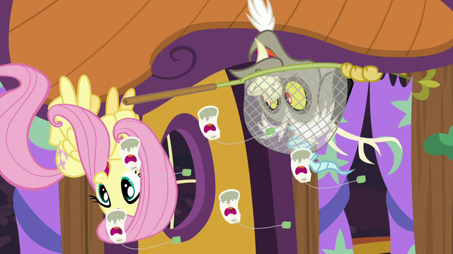 File:Fluttershy and Discord laugh at singing ginseng S7E12.png