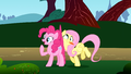 Fluttershy crashes against Pinkie S1E7.png