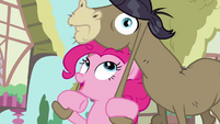 Pinkie Pie Wants To Be Friends S02E18