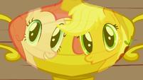 Pinkie Pie joins Applejack 2 S1E4