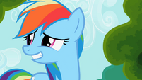Rainbow Dash smiles awkwardly S2E08