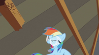 Rainbow Dash throwing piece of wood S2E03